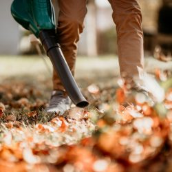 Updated Leaf Blower Ordinance in the City